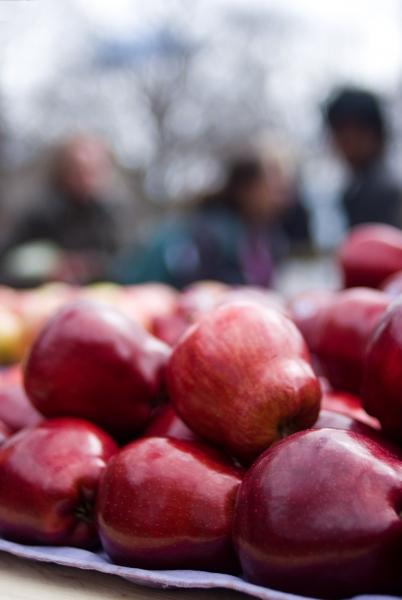 Fruktstopp på skolor väcker ursinne