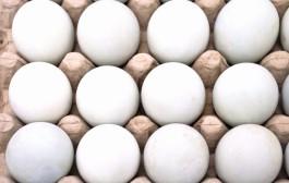Finska ägg såldes som svenska