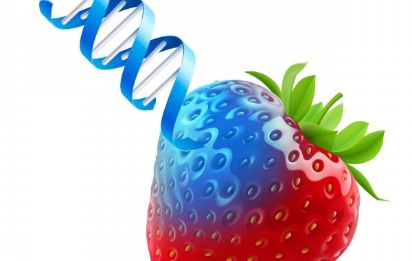 Stor minskning av farliga ämnen i maten
