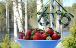 Ont om svenska jordgubbar