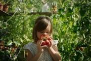 Fyra av tio barnfamiljer vill äta mindre kött